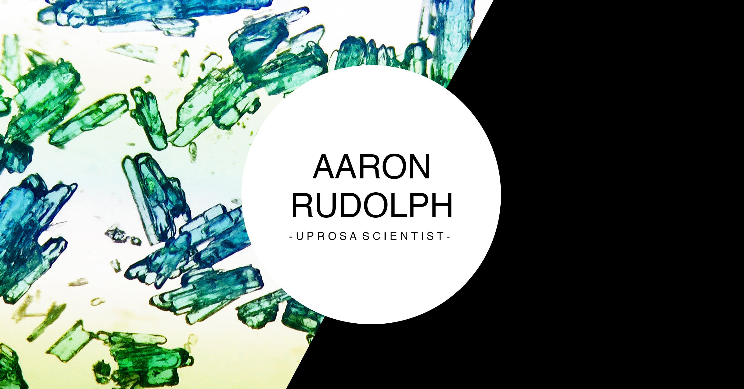 Aaron Rudolph - UPROSA Scientist Collection