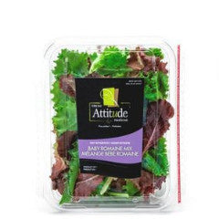 Fresh Attitude Romain Mix Salad