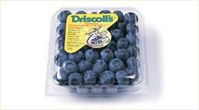 Driscoll's Blueberries pack
