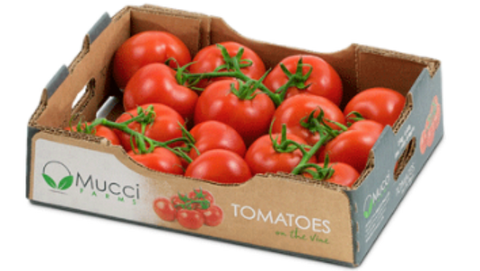 Mucci Tomatoes