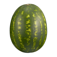 Watermelon Seeded
