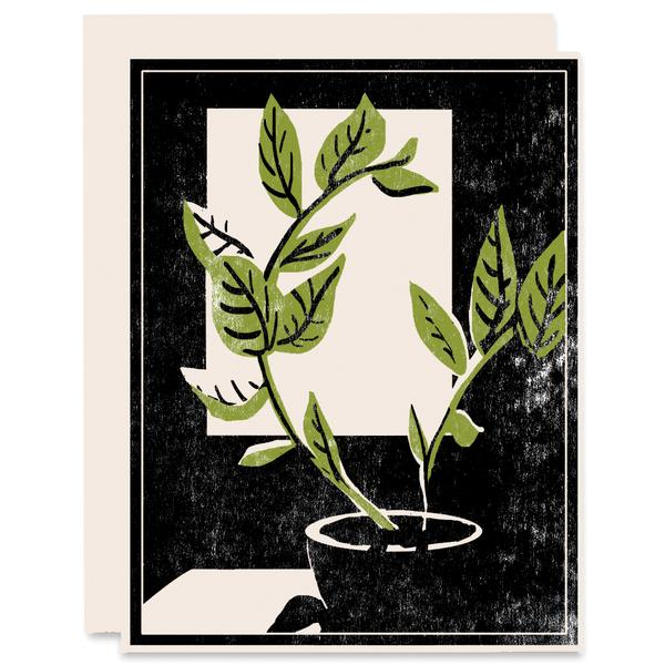 Plant by the Window - Card