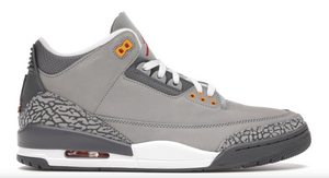 "Air Jordan 3 Retro ""Cool Grey 2021"""