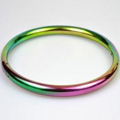 Rainbow Steel Slave Collar