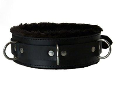 Lined Collar with D-Rings and Locking Buckle (Style 5)