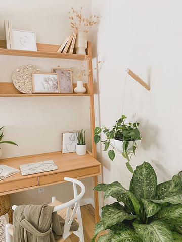 Office Decor with Plants