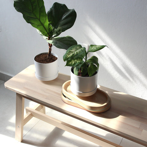 Loop Living Planter