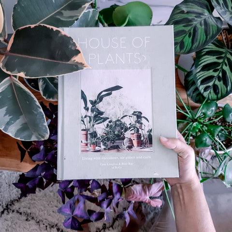 House of Plants Review