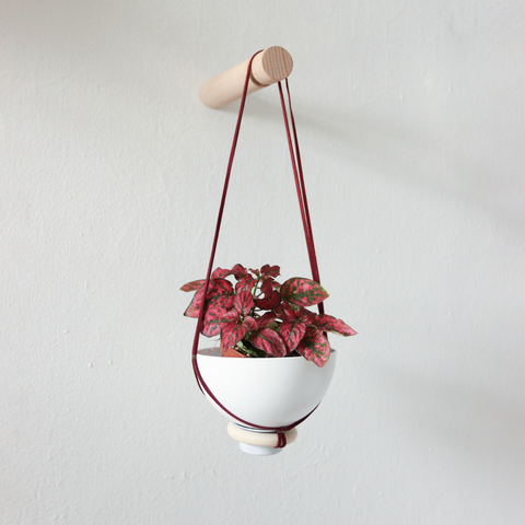 New Hanging Planter