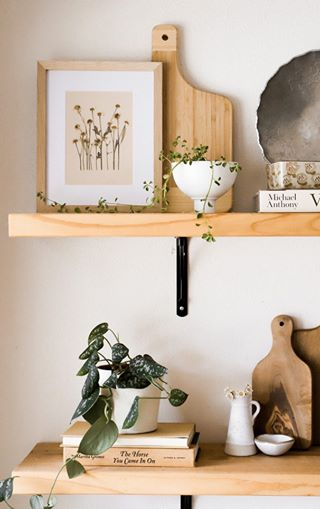 how to style a shelf with plants