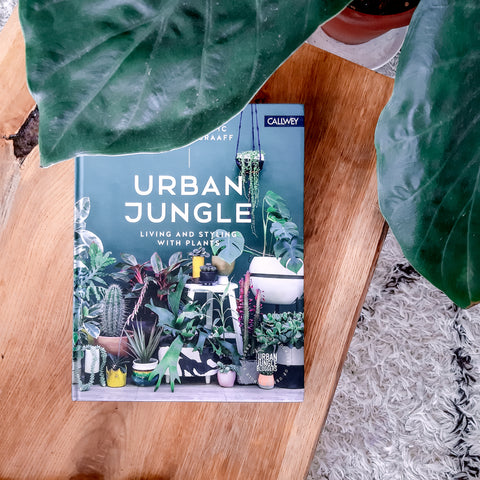 Urban Jungle Review