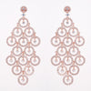 Chic Chadelier Earrings - Jewelry Buzz Box  - 4