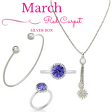 March Red Carpet Silver Box - Jewelry Buzz Box  - 1