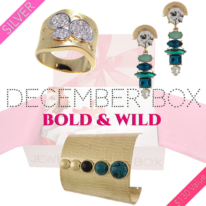 December Bold & Wild Silver Box - Jewelry Buzz Box  - 1