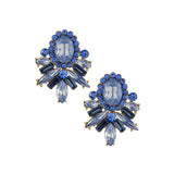 Ravishing Earrings - Jewelry Buzz Box  - 1