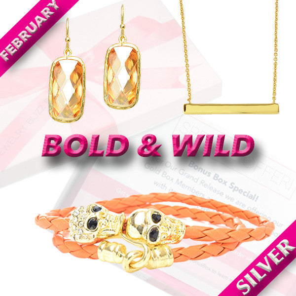February Silver Bold Box - Jewelry Buzz Box  - 1