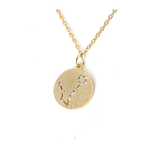 Zodiac Disk Necklace - Jewelry Buzz Box  - 2