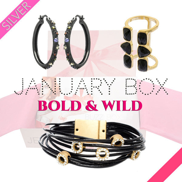 January Bold & Wild Silver Box - Jewelry Buzz Box  - 1