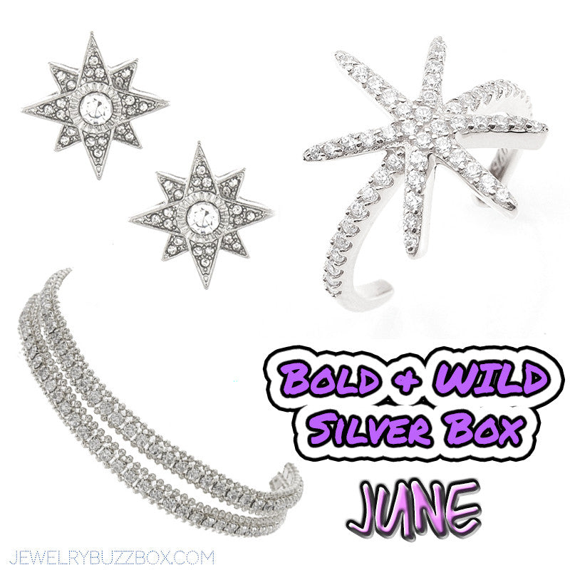 June Bold & Wild Silver Box - Jewelry Buzz Box  - 1