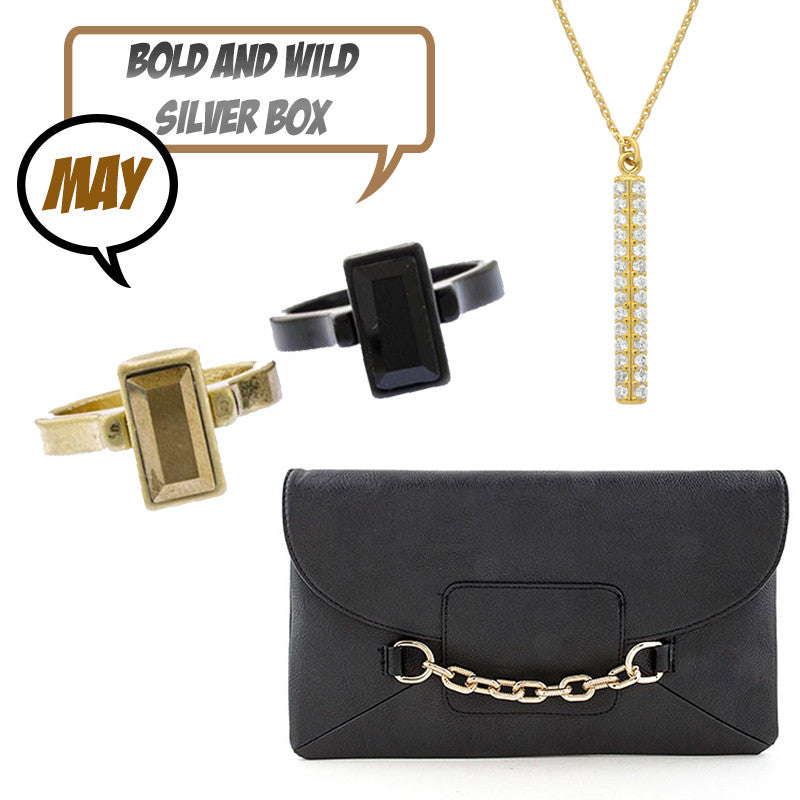 May Bold & Wild Silver Box - Jewelry Buzz Box  - 1