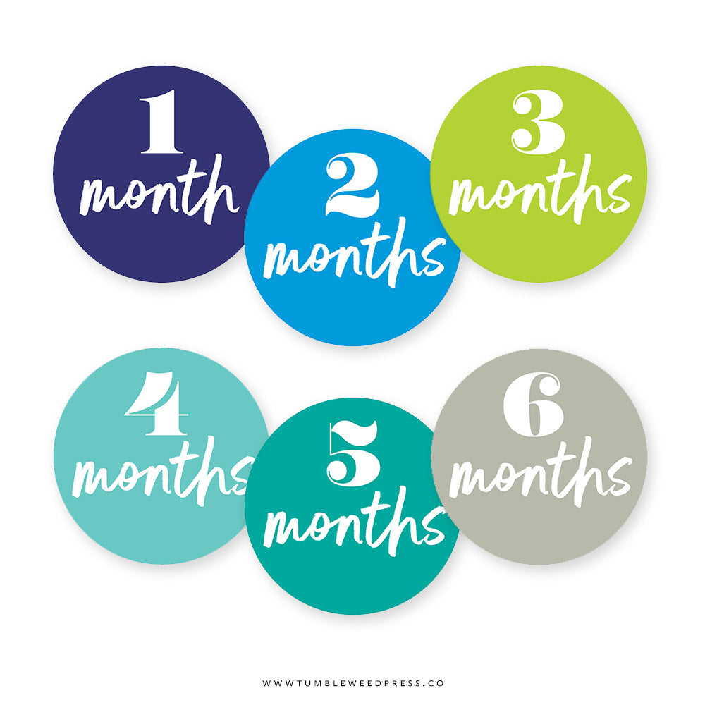 Baby Month Stickers: Ocean