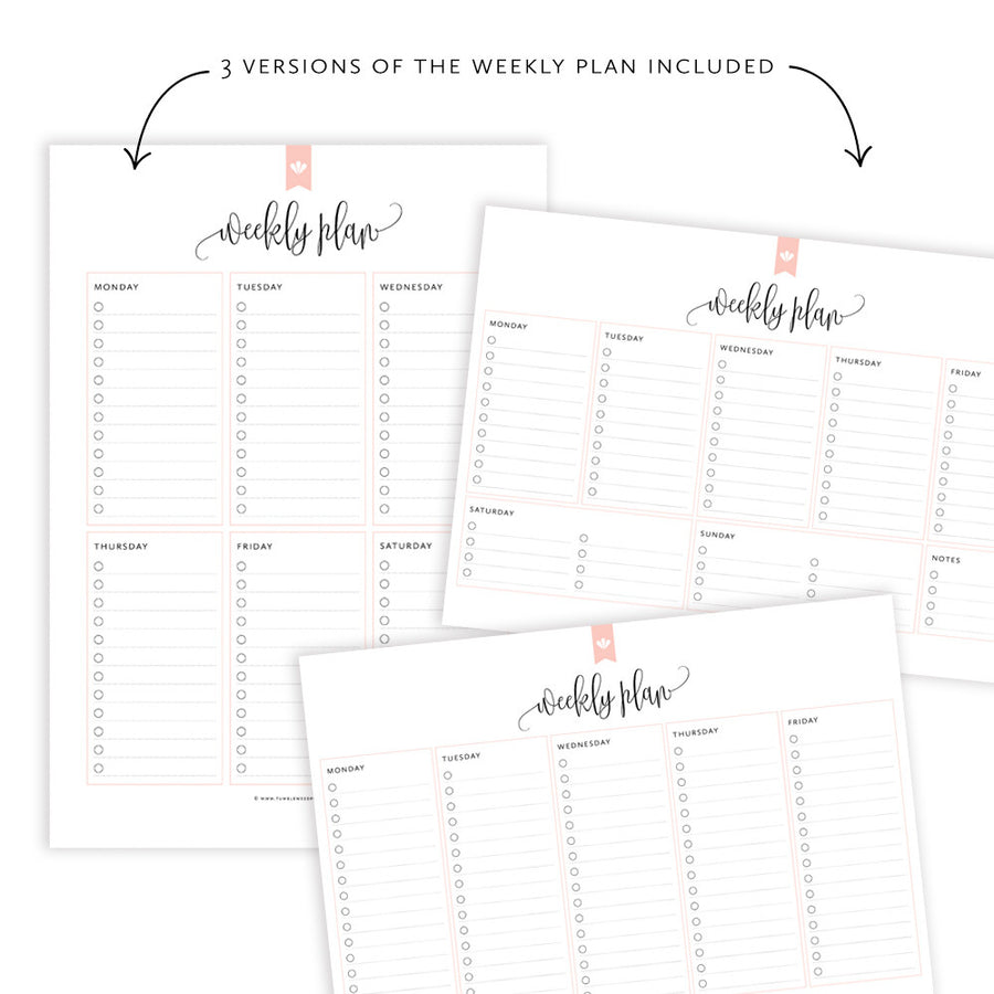 Weekly Planner: Taylor