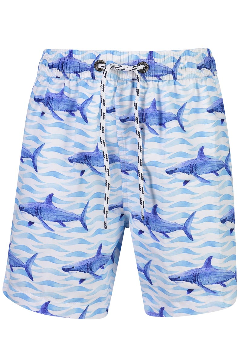Snapper Rock School of Sharks Boardies