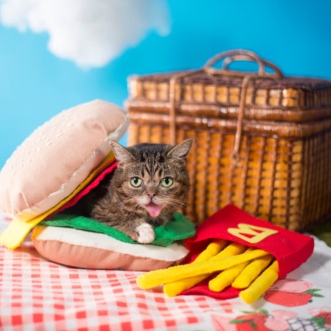 Photo Print - BUB Burger