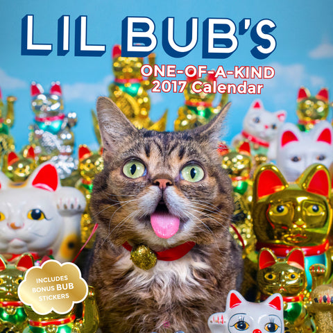 Lil BUB's One of a Kind 2017 Calendar, w/free sticker sheet