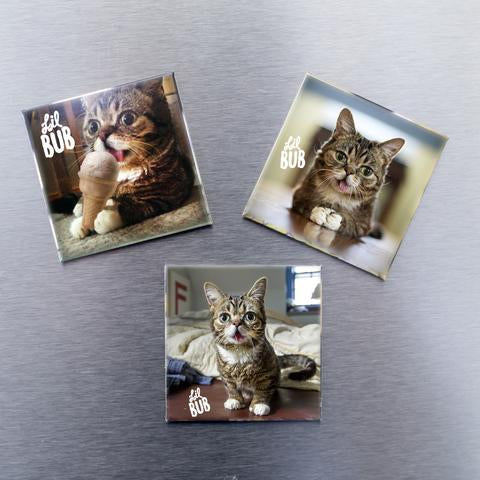 Magnets - Classic BUB - Set of 3
