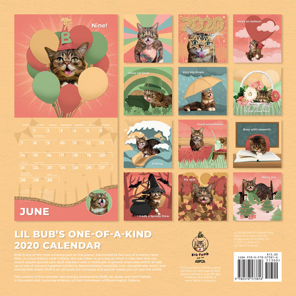 Lil BUB's 2020 BUB Calendar - NOW SHIPPING!
