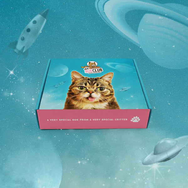 BUB CLUB Space Edition (Q1) - Lil BOX