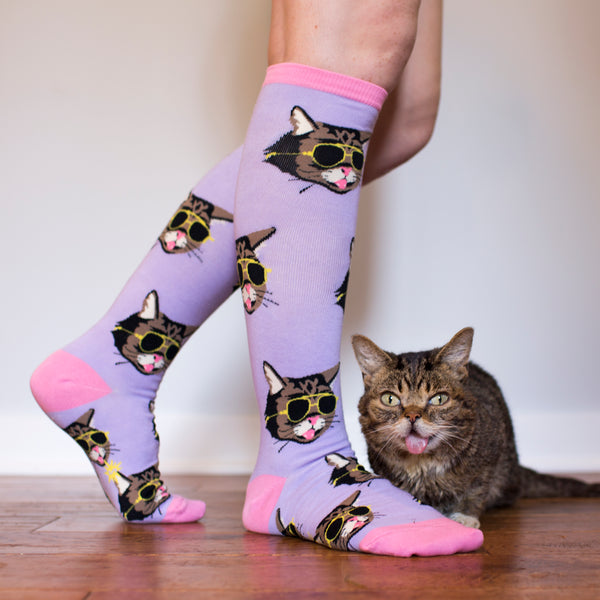 The Lil BUB Knee Sock Gift Bundle (3 Unique Pairs)
