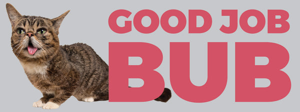 Lil BUB Good Job BUBmper Sticker bumper