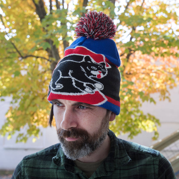 Knit Hat - Chicago BUBs 2018