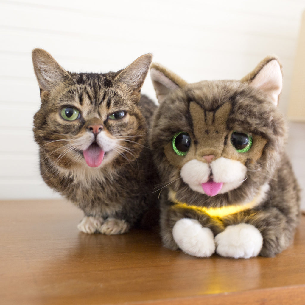 Lil BUB Glow & Purr Plush Toy