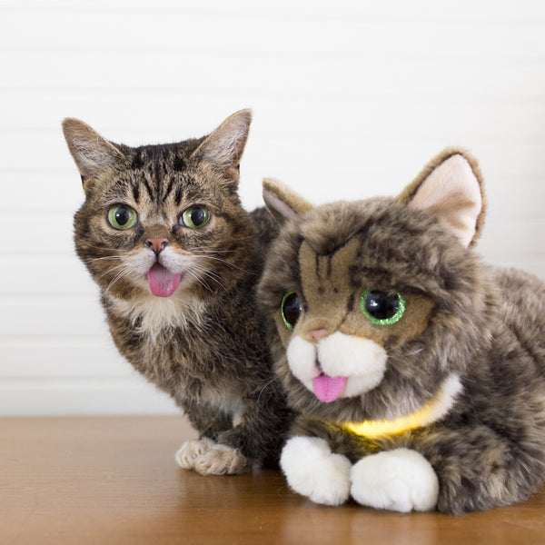 Lil BUB Glow & Purr Plush TOY - with sound and light!