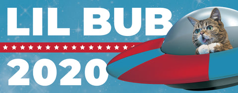 BUBmper Sticker - 2020 Election - VOTE BUB