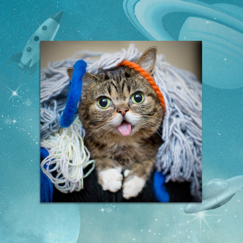 Photo Print - BUB Yarn - BUB CLUB 1