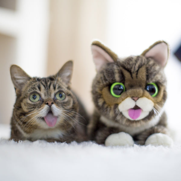 Lil BUB Plush Toy