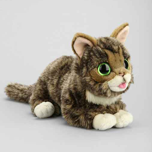 Cat Stuffed Animal Www Picswe Com