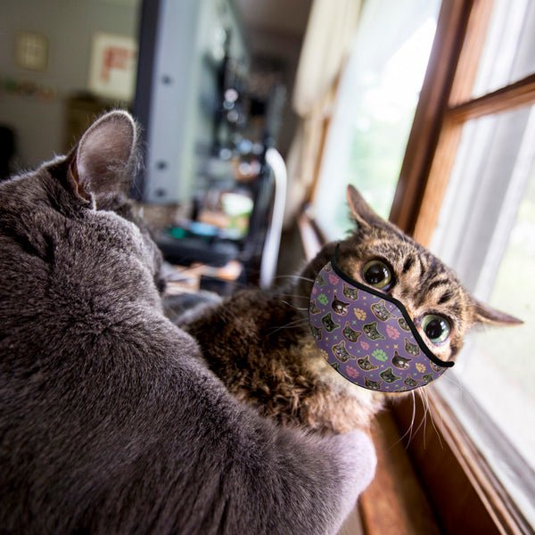 Face Mask - Everywhere BUB - Purple