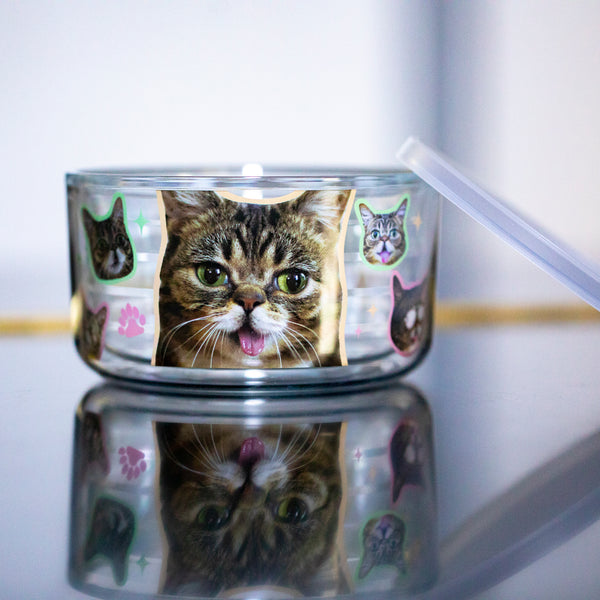 Travel Bowl - Everywhere BUB