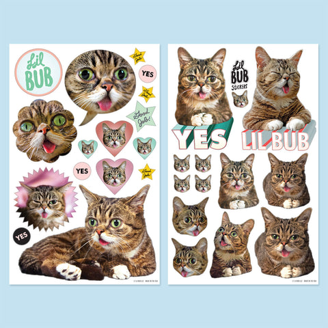 Lil BUB Sticker Sheet