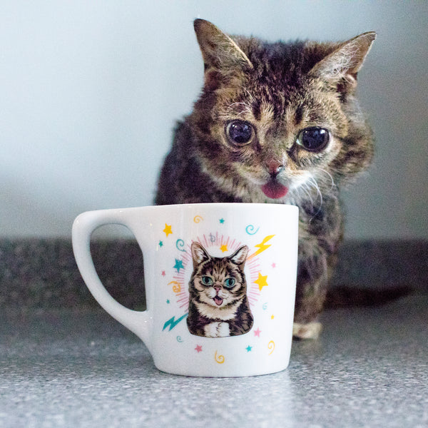 Lil BUB's Coffee Lovers' Bundle