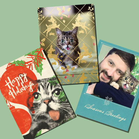 Lil BUB 2015 Holiday Cards
