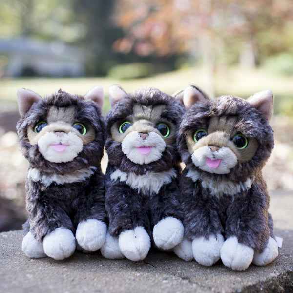 Lil BUB Mini Plush - Baby BUB