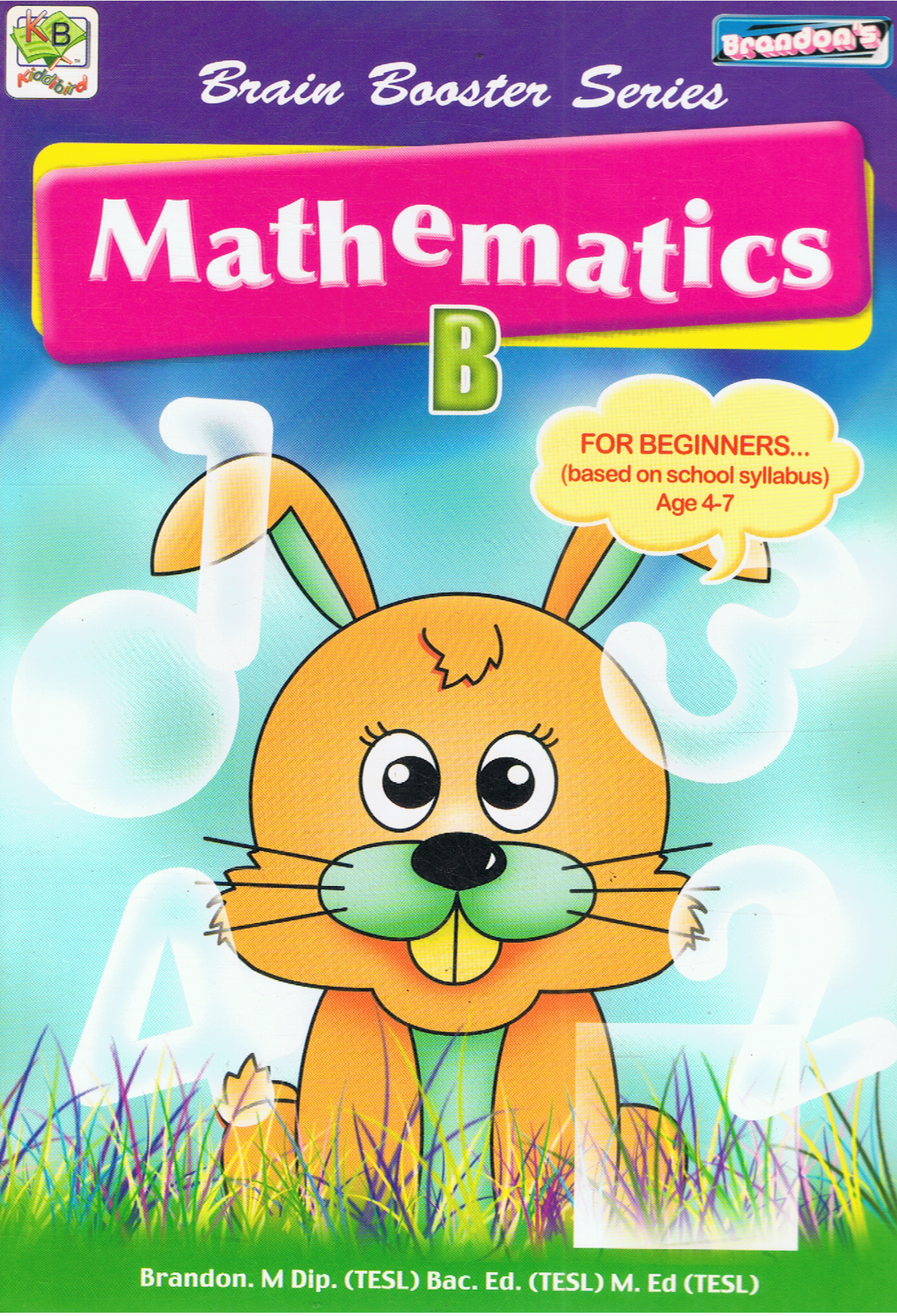 Brain Booster Series: Mathematics B
