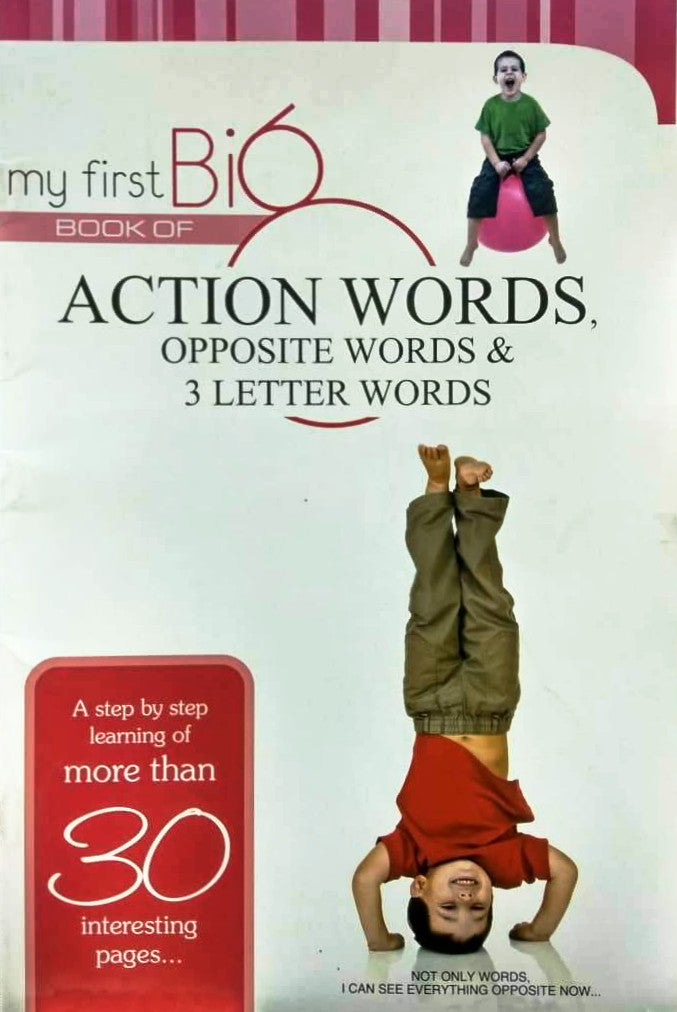 My First Big Book Of Action Words Opposite Words & 3 Letter Words