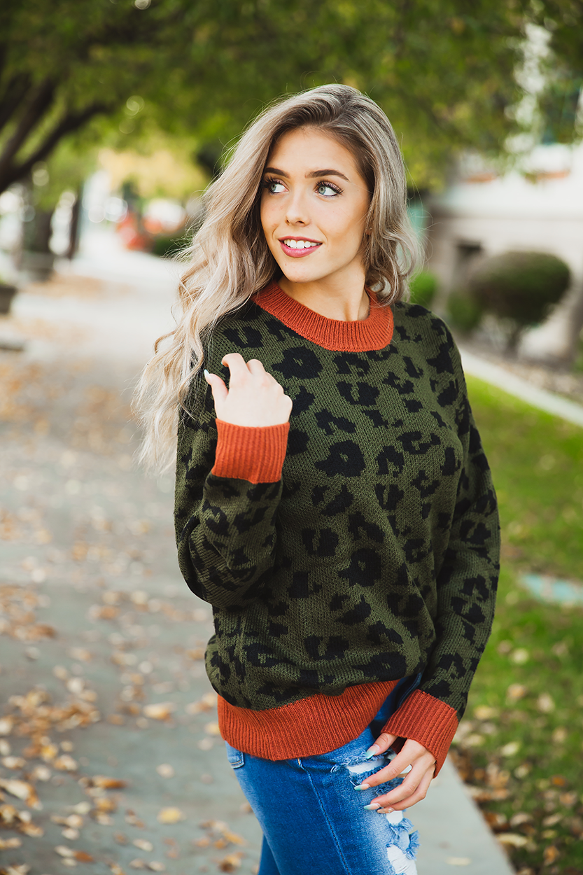 Can't Tell You No Olive Animal Print Sweater